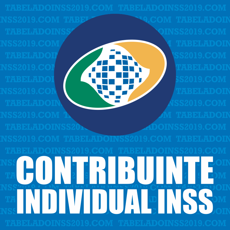Contribuinte Individual INSS 2019