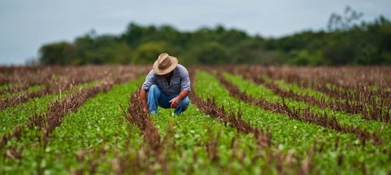 Aposentadoria Rural 2020